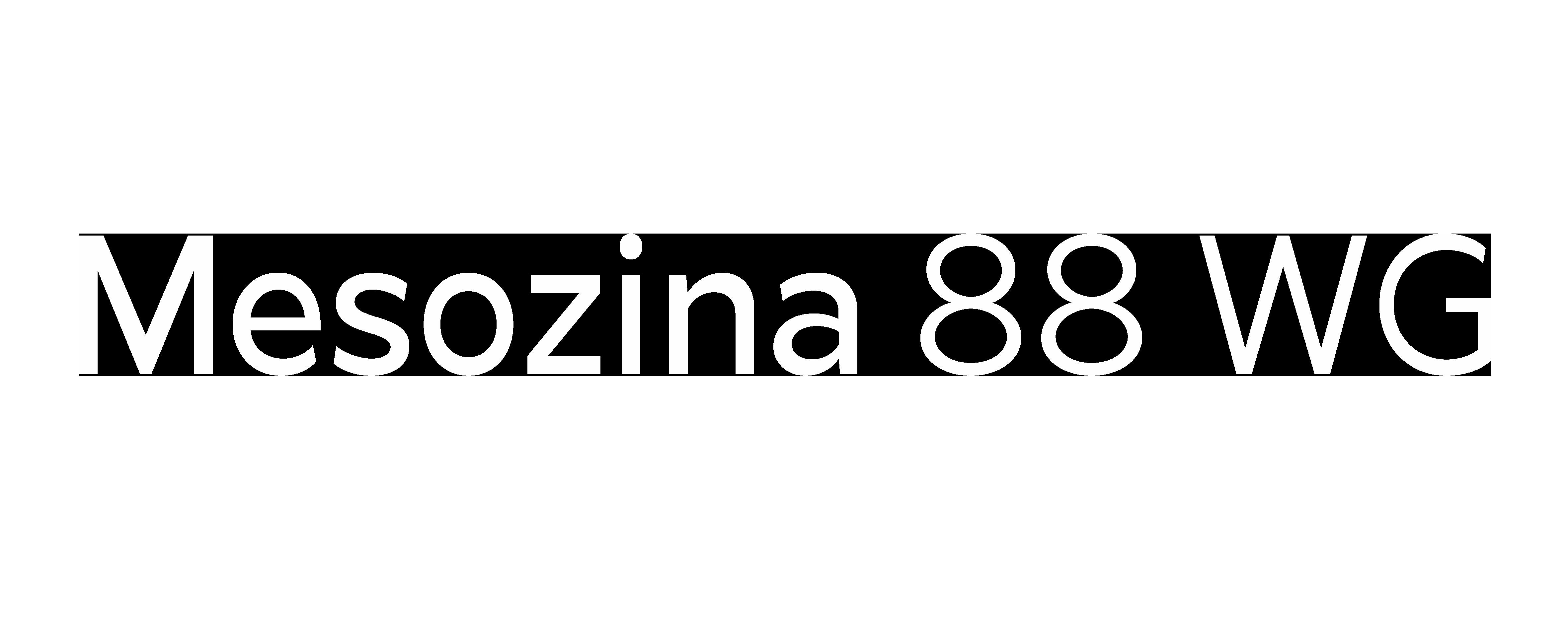 MESOZINA-88-WG